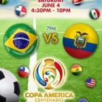 Copa America Brazilian Party
